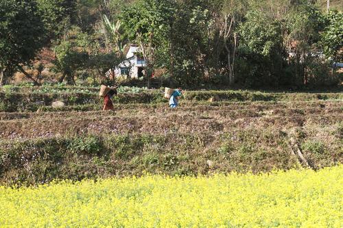 IMG_2005農村風景