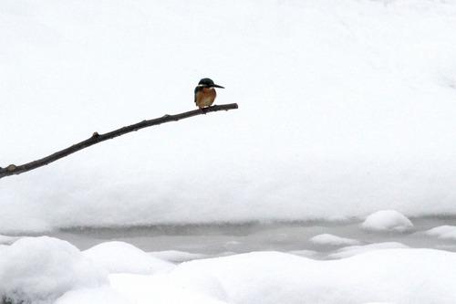 IMG_5718 雪の第3池 ブログ