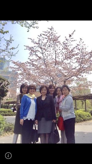ケイプラネット2018お花見 六本木