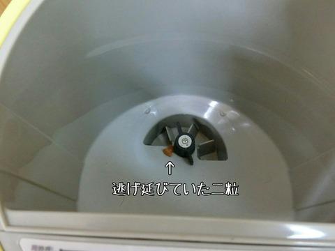 [画像:b75bc871-s.jpg]