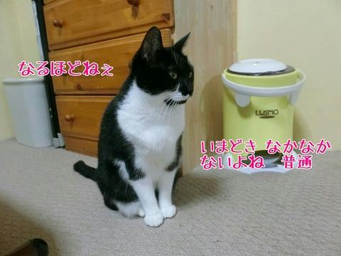 [画像:d89e5868-s.jpg]