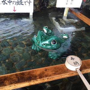 二見興玉神社の手洗い場のカエル