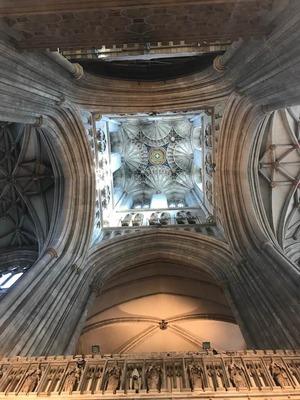 カンタベリー大聖堂 天井