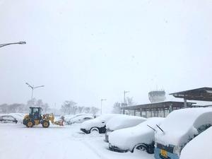 中標津 雪