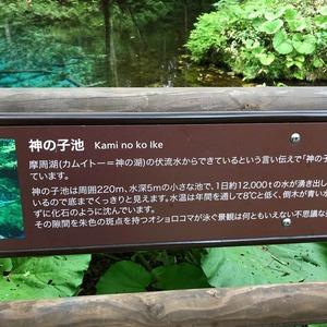神の子池 看板