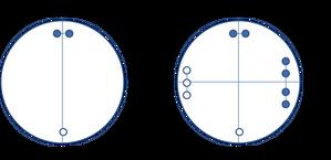 太極図の時空モデル