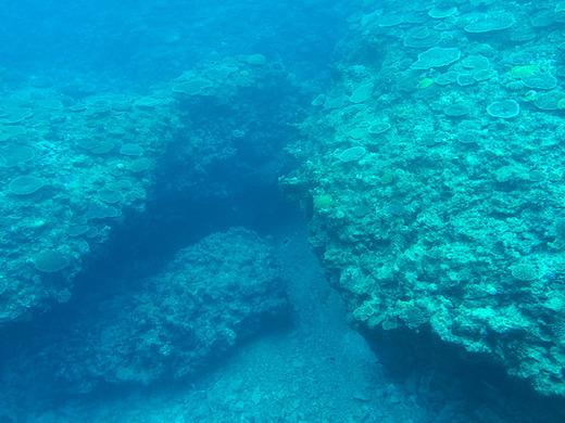 伊江島の水中観光船で見る海