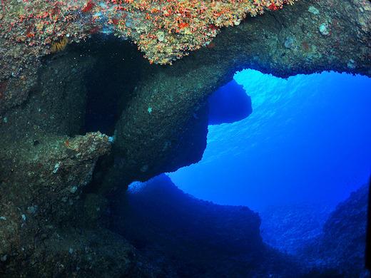 11月なのに伊江島北側ポイントでダイビング