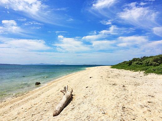 伊江島の流木とビーチ