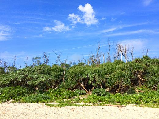 伊江島、2月の晴れた日