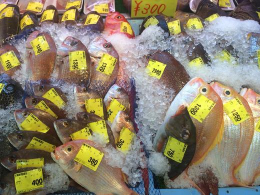 「泊いゆまち」で売られているカラフルな魚