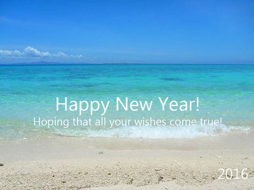 2016年 Happy New Year!