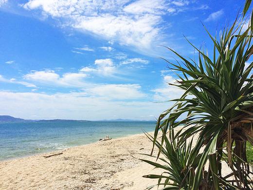 伊江島のアダンとビーチ