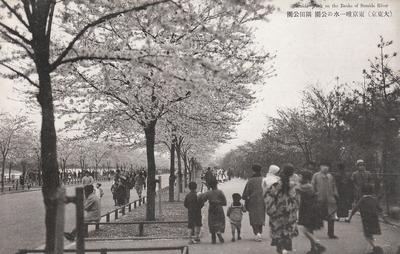 東京唯一水の公園 隅田公園