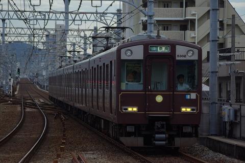 IMGP5956_s