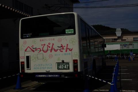IMGP3261_s
