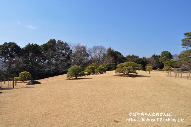 f7588dc4.jpg
