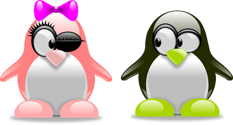 penguins-157418_640