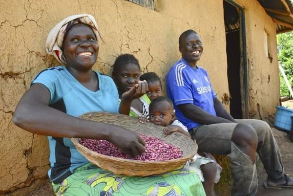 【ベーシックインカム】お金もらうと人間は怠ける?ケニアの2万人「大実験」 がこちら→