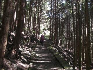 熊野古道③