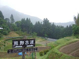 熊野古道④