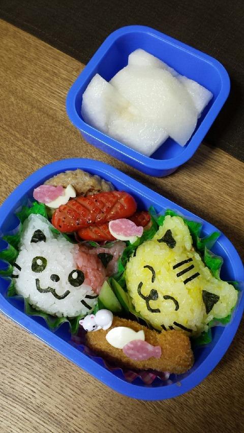 りゅうきお弁当の歴史❤(笑)_4058