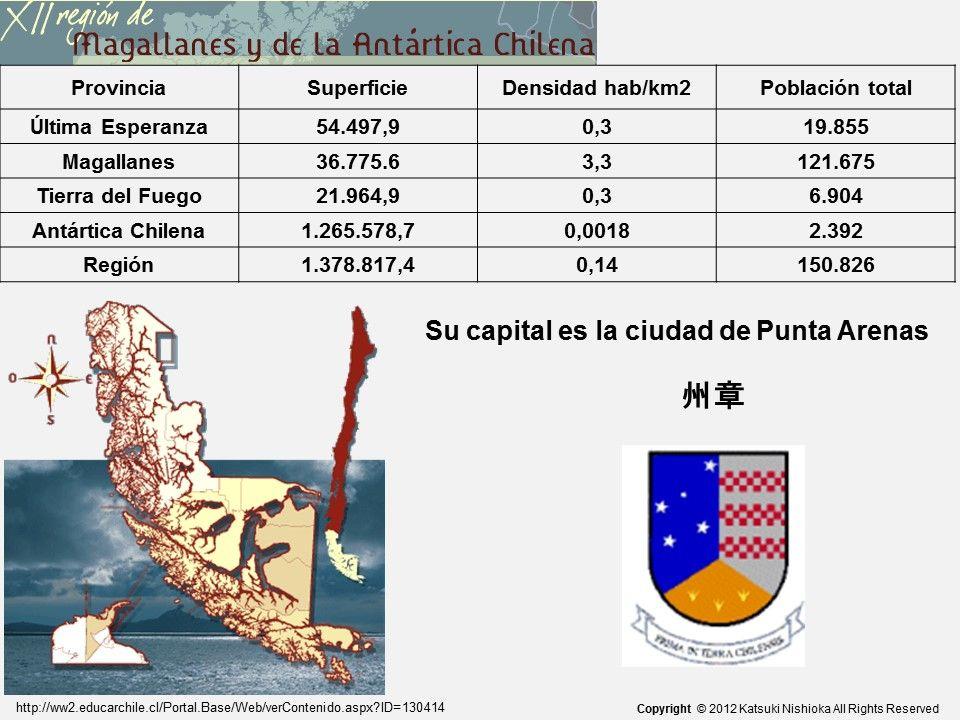 チリの旗の特徴