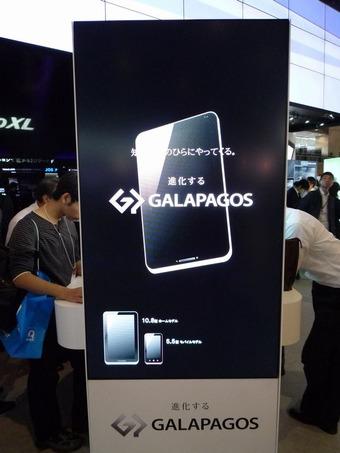 galapagos1(ガラパゴス)