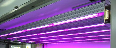 植物育成LED点灯中