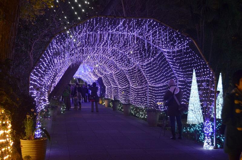 いつもより華やかに! クリスマス魅力アップ術 ~アイメイク編~