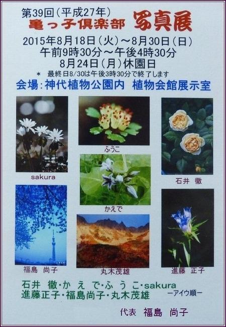 第39回・亀っ子倶楽部写真展