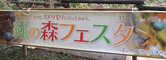 2012緑の森フェスタ