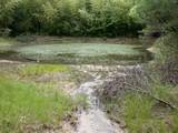 DSCN2046 西の湿地側から見た小田池