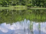 DSCN2763 アザミ池