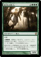 高木の巨人