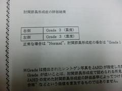 CIMG9442