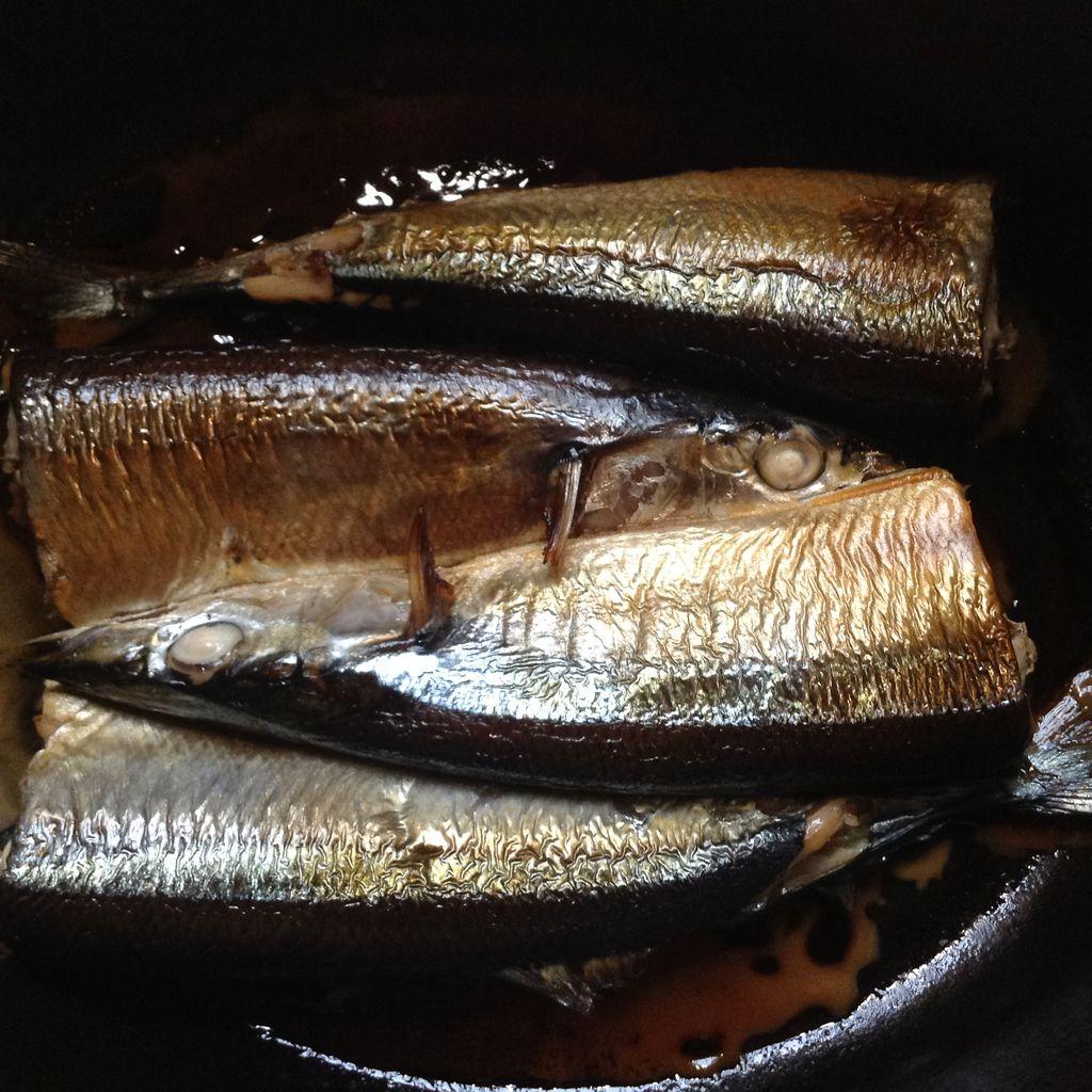 秋刀魚と春