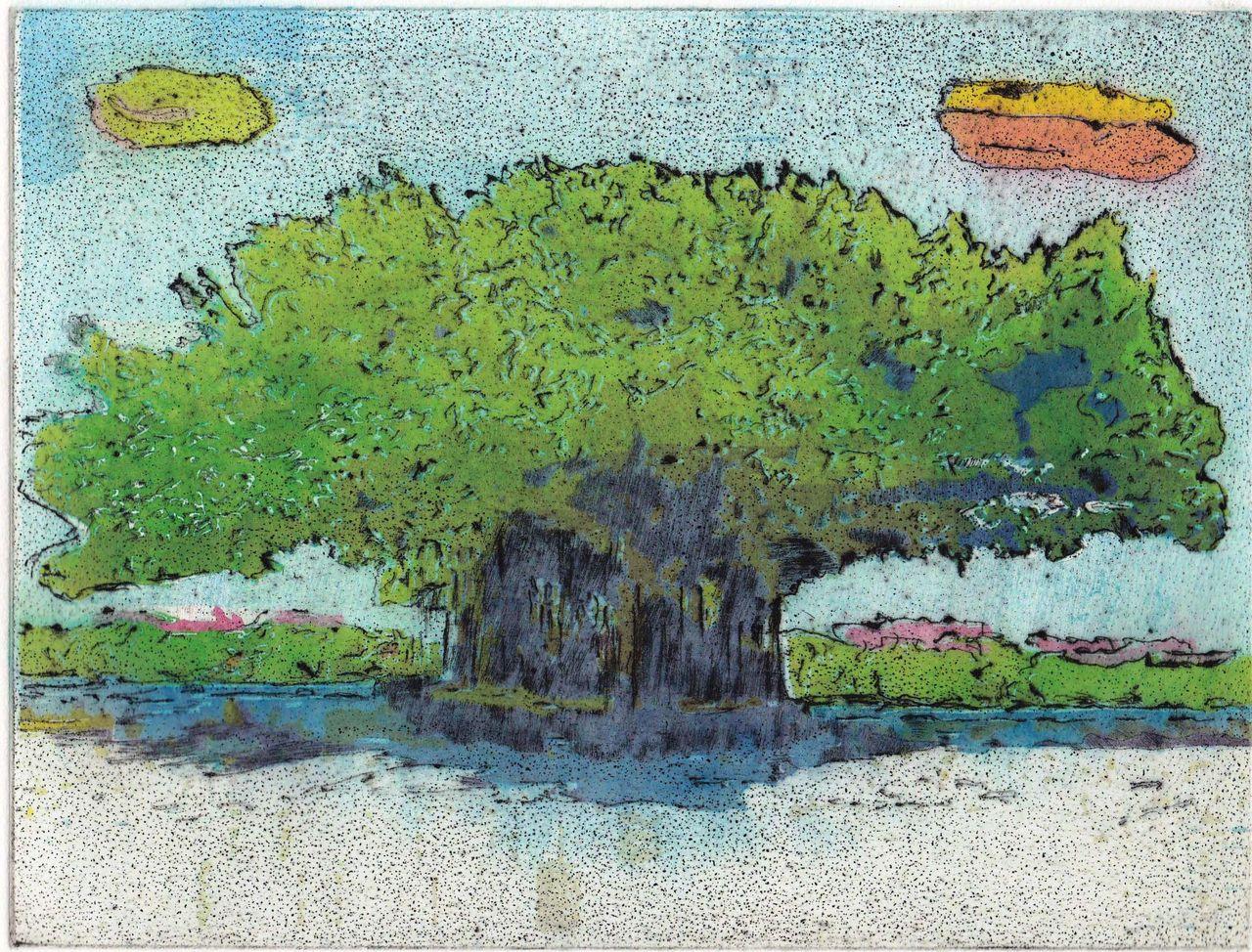 刷った~ Banyan Tree@Kapiolani Park