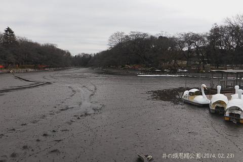 20140223_御殿山コミセン1
