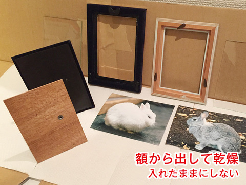 Gaku_Image++