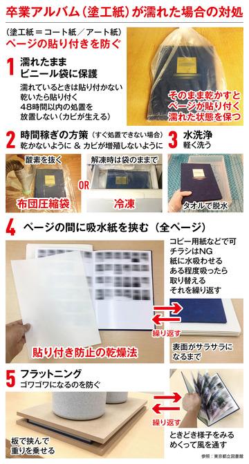 Sotsual_Chart+
