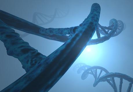 deoxyribonucleic-acid-3171255_640