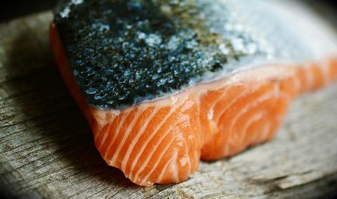salmon-3139387_640