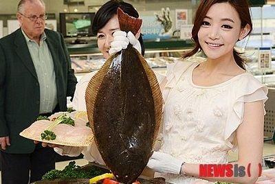 韓国産ヒラメ