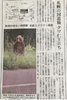 ヒグマ 北海道新聞