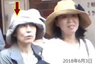 師岡康子弁護士