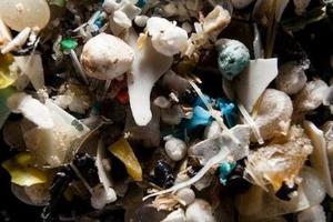 マイクロプラスチックのたまり場:地中海