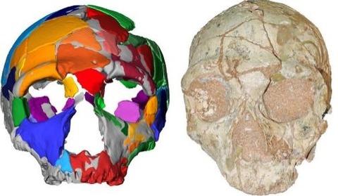 アフリカ外で焼く20万年前の人骨