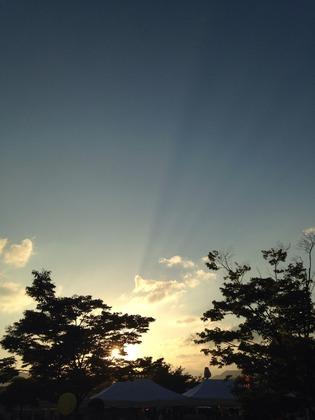 一眼レフかiPhoneで撮った写真