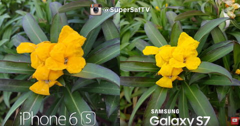 iPhone6sとGalaxy S7のカメラ性能比較